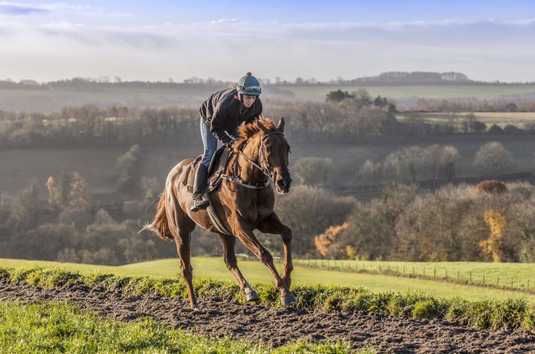 Scotchtown on the all weather gallops Grange Hill Farm with Irena Kadlecova