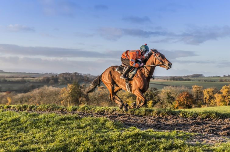 Ballymoy all weather gallops at Grange Hill Farm