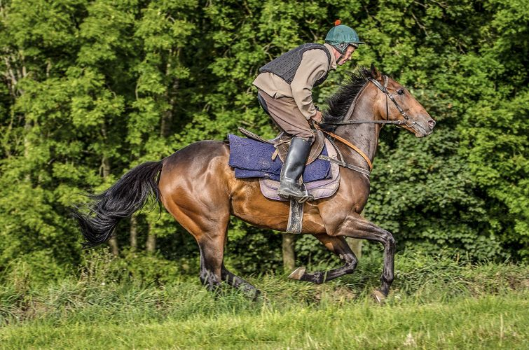 Double Court Grange Hill Farm all weather gallops Craig Gilbey