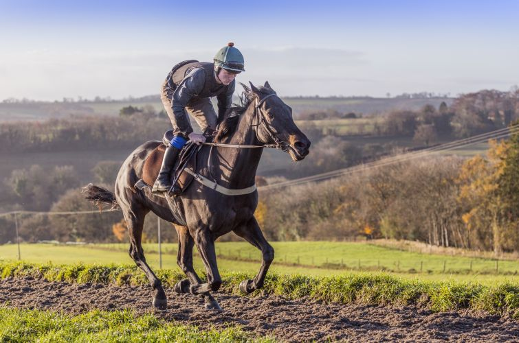 Ballyhill all weather gallops at Grange Hill Farm