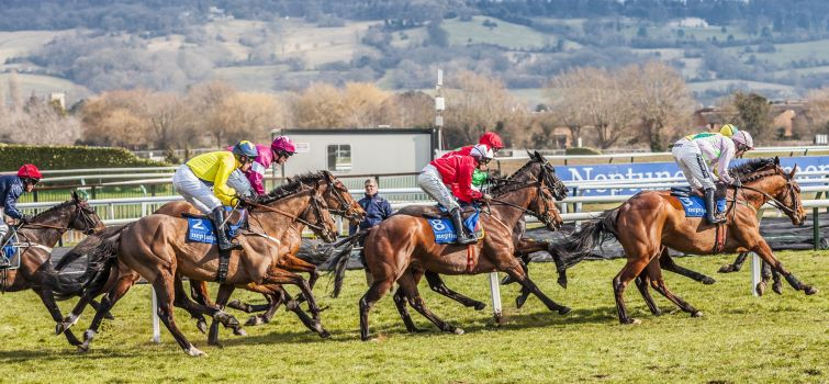 Team Twiston Cheltenham Festival Day One