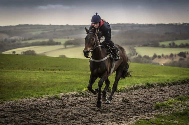 Waitonit on the all weather gallops at Grange Hill Farm
