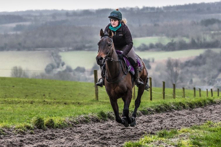 Bit On The Side on all weather gallop