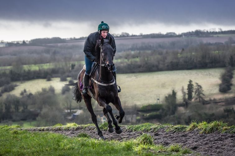 Milanstorm all weather gallops Alice Campbell