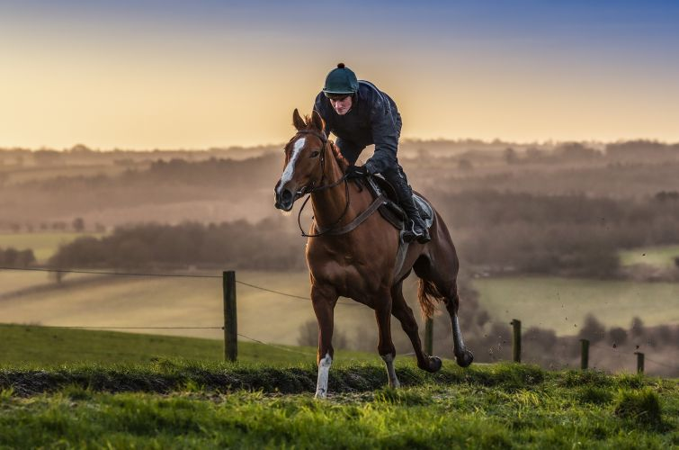 One True King on the all weather gallops with Zac Baker